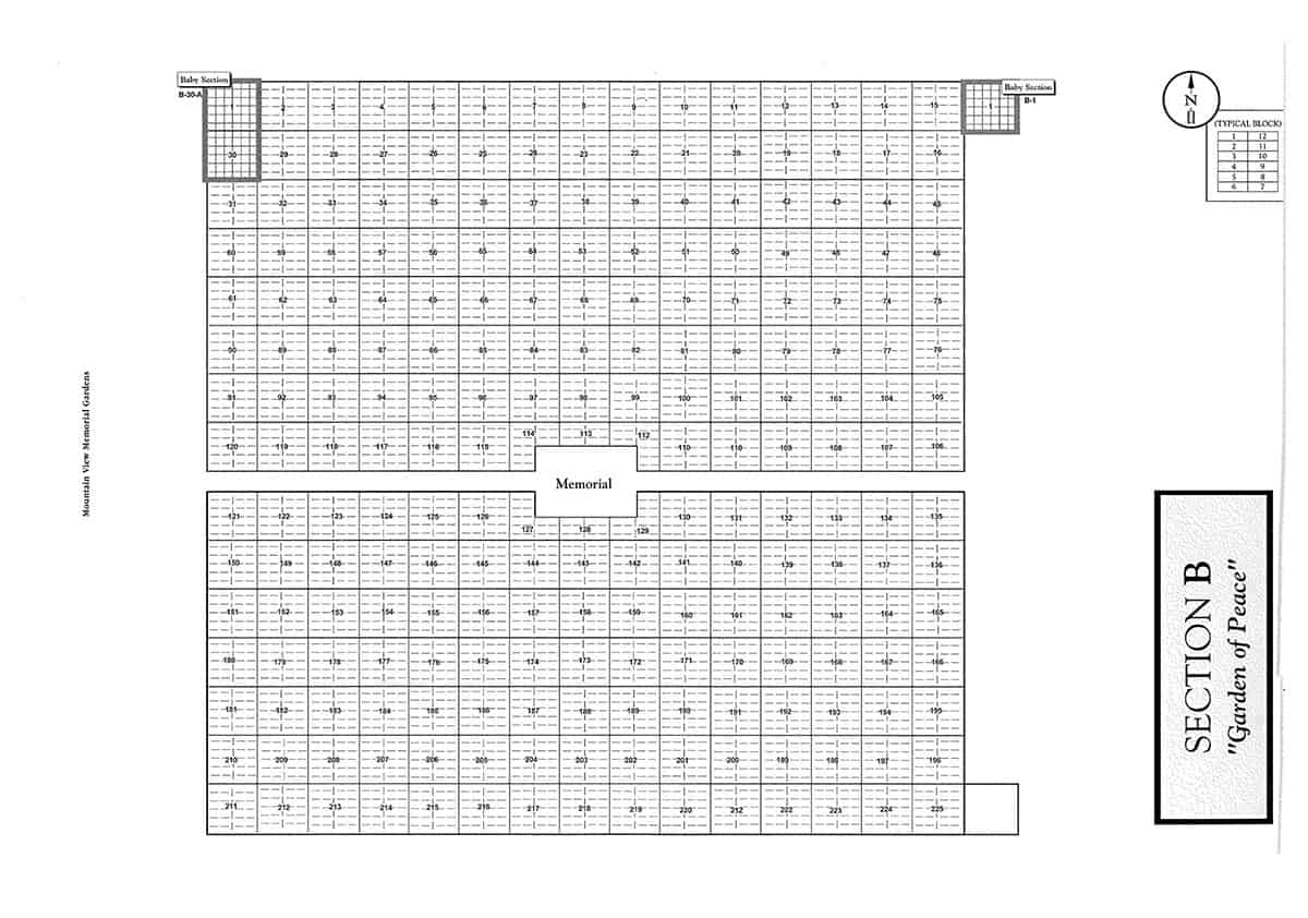 Section B |